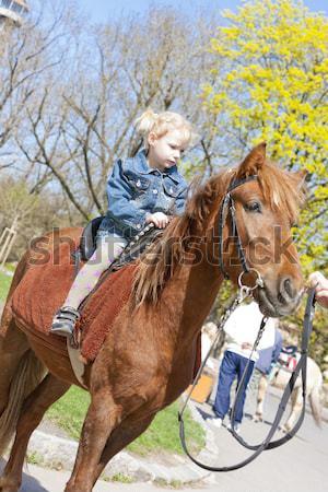 little girl on horseback Stock photo © phbcz