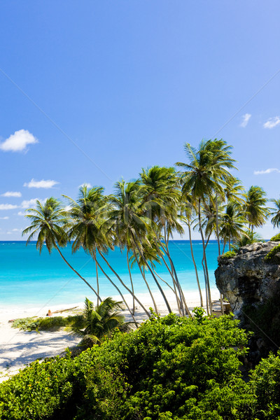 Bottom Bay, Barbados, Caribbean Stock photo © phbcz
