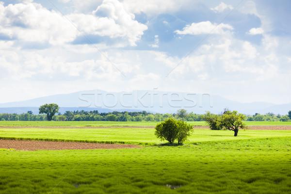 весны плато Франция пейзаж путешествия Сток-фото © phbcz