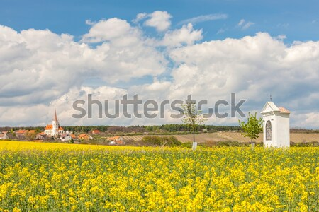 chapel, Plateau de Valensole, Provence, France Stock photo © phbcz