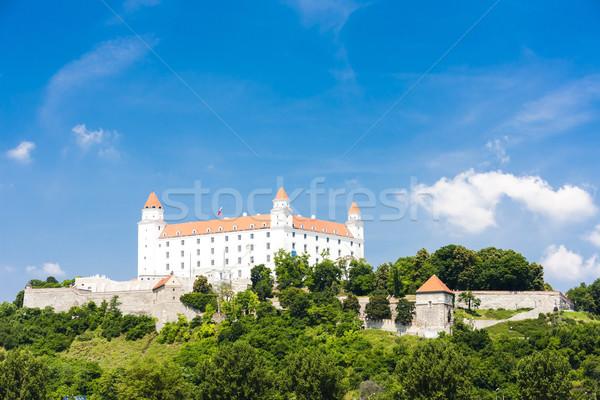 Bratislava castello Slovacchia città viaggio architettura Foto d'archivio © phbcz