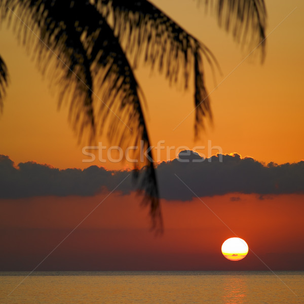 sunset over Caribbean Sea, Mar Stock photo © phbcz