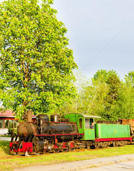 Stoomlocomotief Servië reizen buitenshuis vervoer en Stockfoto © phbcz