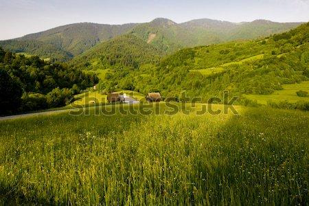 Velka Fatra, Slovakia Stock photo © phbcz