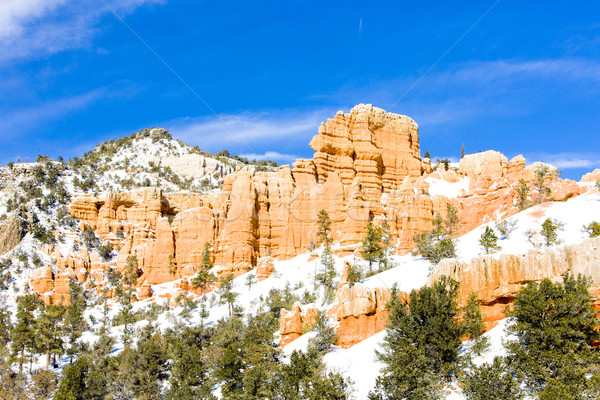 Bryce Canyon National Park in winter, Utah, USA Stock photo © phbcz