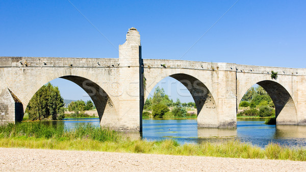 bridge in Medellin, Badajoz Province, Extremadura, Spain Stock photo © phbcz