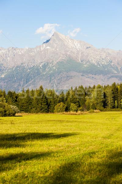 Dağ yüksek Slovakya manzara dağlar Avrupa Stok fotoğraf © phbcz