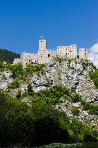 Romok kastély Szlovákia épületek építészet történelem Stock fotó © phbcz