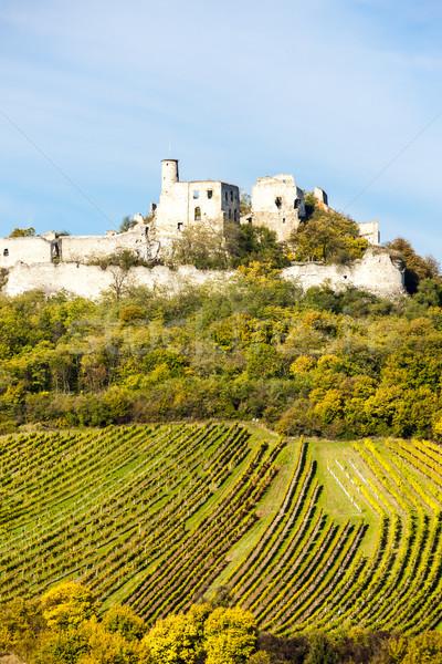 Ruinas castillo vina otono bajar Austria Foto stock © phbcz