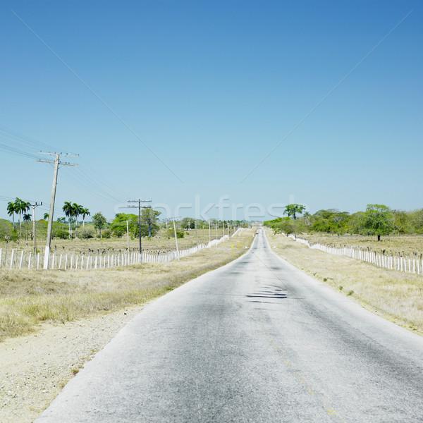 road, Camaguey Province, Cuba Stock photo © phbcz