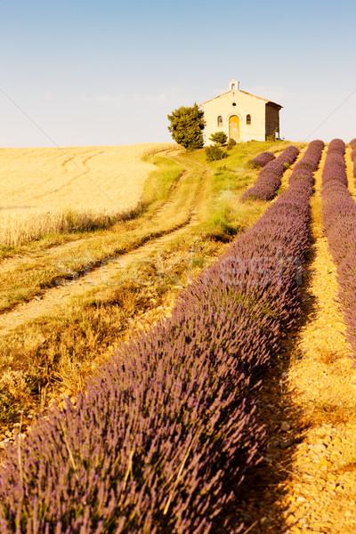 Chapelle lavande grain champs plateau bâtiment Photo stock © phbcz