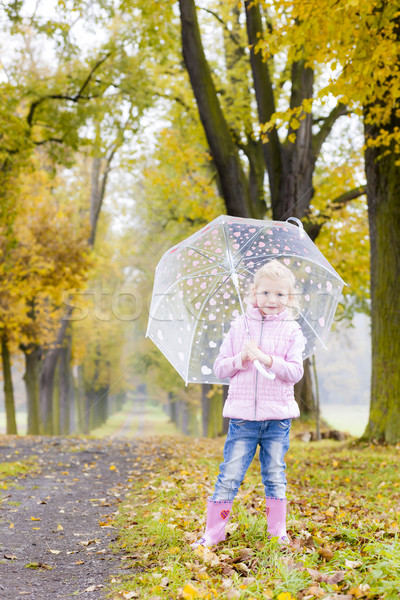 little girl with umbrella in autumnal alley Stock photo © phbcz