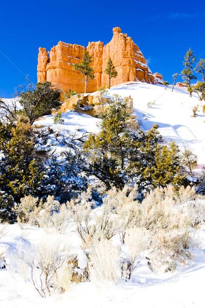 Canyon parc hiver Utah USA paysage Photo stock © phbcz
