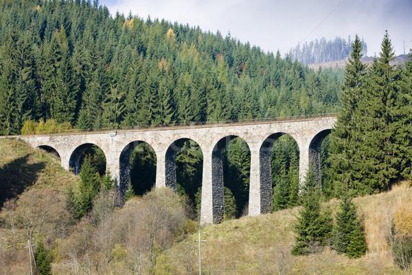 Spoorweg Slowakije reizen architectuur bruggen outdoor Stockfoto © phbcz