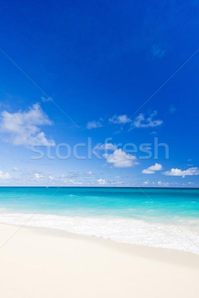 ストックフォト: バルバドス · カリビアン · ビーチ · 島 · 熱帯 · 休日