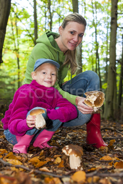 mother with her daughter doing mushroom picking Stock photo © phbcz
