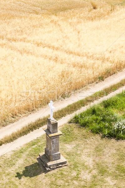 Atravessar grão campo República Checa Foto stock © phbcz