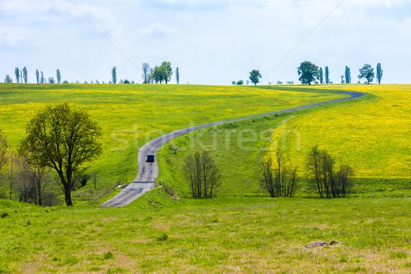 Bahar manzara yol Çek Cumhuriyeti bitki ülke Stok fotoğraf © phbcz