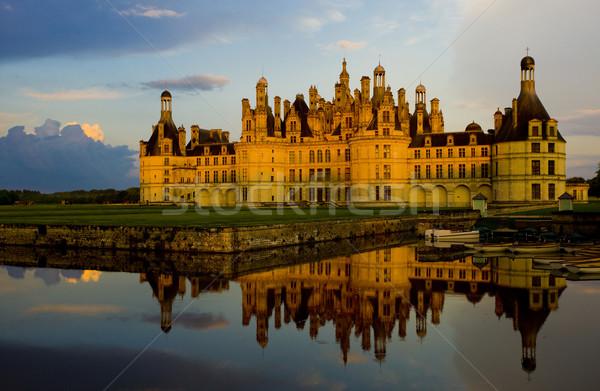 Kastély centrum Franciaország víz épület építészet Stock fotó © phbcz