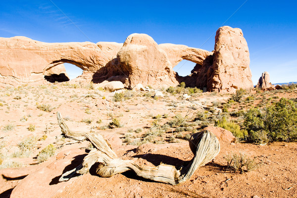 North Window and South Window, Arches National Park, Utah, USA Stock photo © phbcz