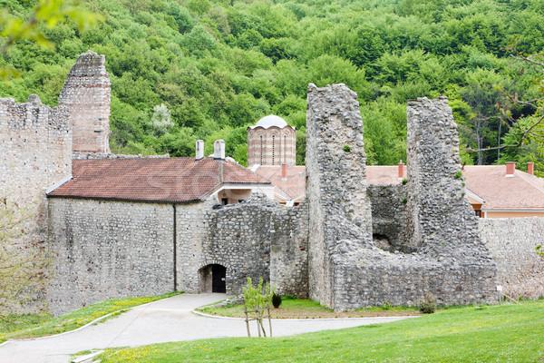 Monastero Serbia costruzione architettura rovine esterna Foto d'archivio © phbcz