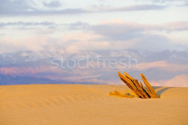 Homok halál völgy park Kalifornia USA Stock fotó © phbcz