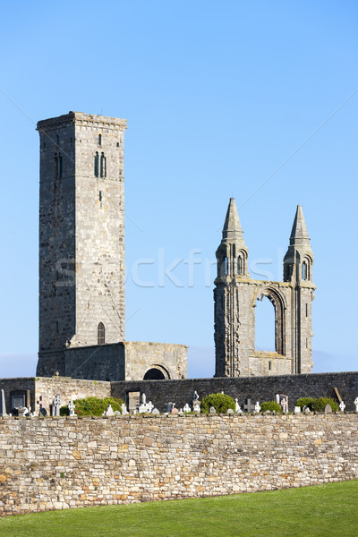 Ruiny zasady kościoła katedry budynku architektury Zdjęcia stock © phbcz
