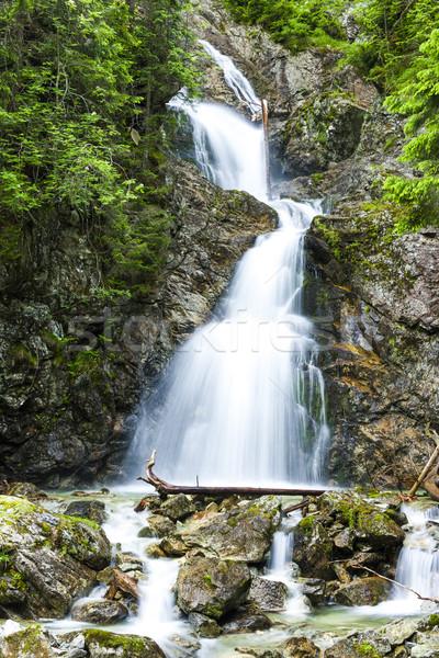 Dolny Necersky waterfall, High Tatras, Slovakia Stock photo © phbcz