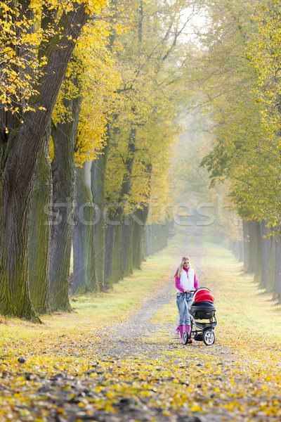 Stock photo: woman with a pram on walk in autumnal alley