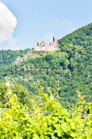 Chateau de Saint-Ulrich near Ribeauville, Alsace, France Stock photo © phbcz