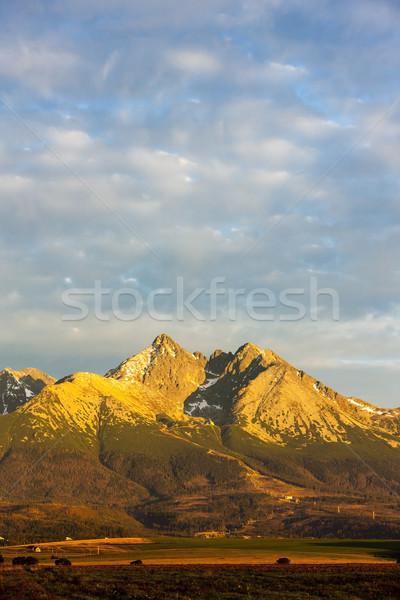 Szczyt wysoki krajobraz Europie panoramiczny ciszy Zdjęcia stock © phbcz