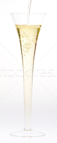 wine glass of champagne Stock photo © phbcz