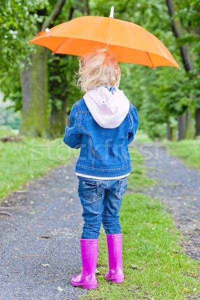Kislány esernyő tavasz sikátor lány gyermek Stock fotó © phbcz