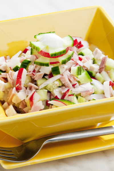 chicken salad with radishes and cucumber Stock photo © phbcz