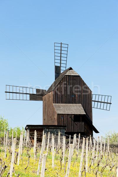 Stock photo: wooden windmill with vineyard, Klobouky u Brna, Czech Republic