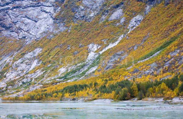 Jostedalsbreen National Park, Norway Stock photo © phbcz