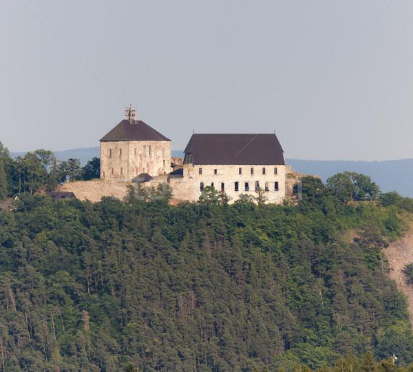 Kale Çek Cumhuriyeti seyahat mimari Avrupa tarih Stok fotoğraf © phbcz