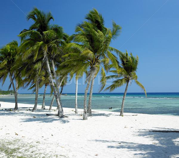 Stock photo: Playa Gir