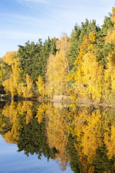 池 チェコ共和国 秋 工場 ヨーロッパ ストックフォト © phbcz