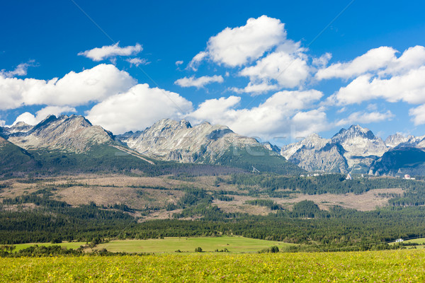 Ocidental alto Eslováquia paisagem europa panorâmico Foto stock © phbcz
