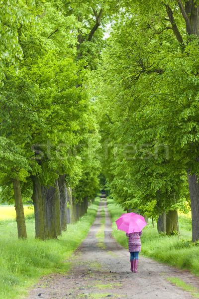 Mulher guarda-chuva primavera beco Foto stock © phbcz