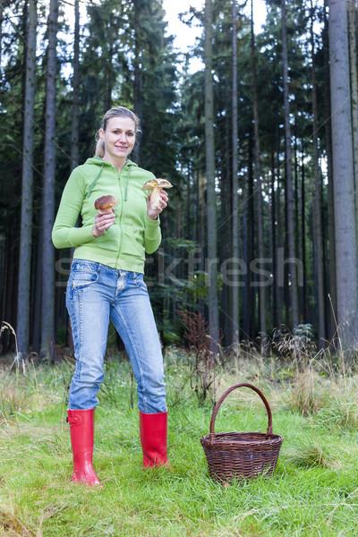 Gomba szőlőszüret nő farmer ősz kosár Stock fotó © phbcz