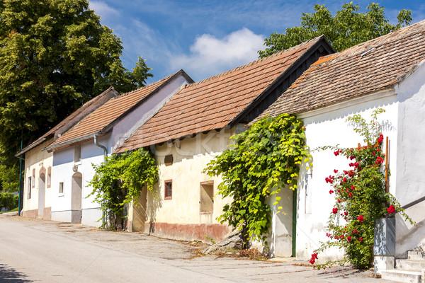 вино снизить Австрия Сток-фото © phbcz