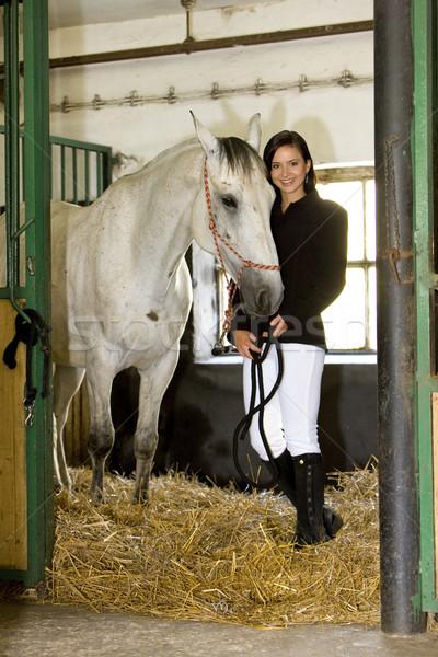 Paard stabiel vrouw jonge paarden Stockfoto © phbcz