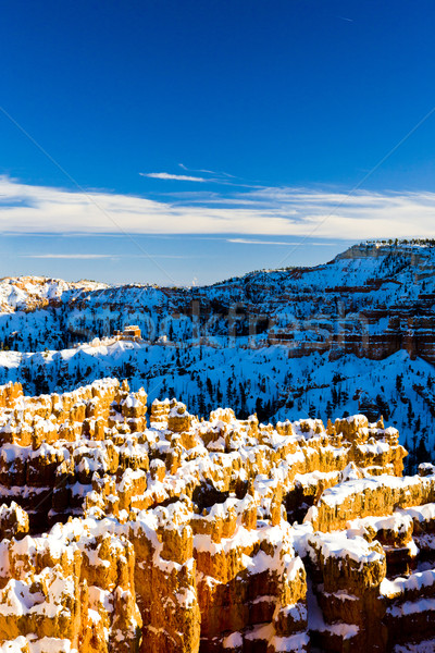 Canyon parc hiver Utah USA nature Photo stock © phbcz