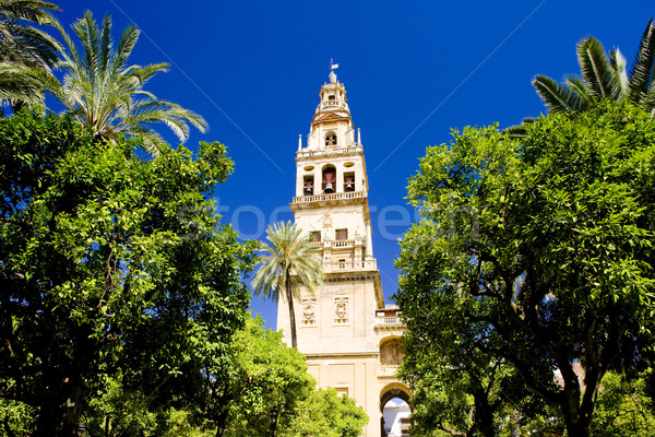 Minaret tower of Great Mosque from Patio de los Naranjos, Cordob Stock photo © phbcz
