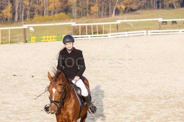 верхом женщины лошади молодые животного Сток-фото © phbcz