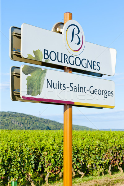 Nuits-Saint-Georges, Burgundy, France Stock photo © phbcz