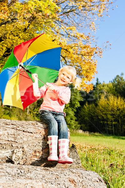 девочку зонтик природы девушки ребенка Сток-фото © phbcz