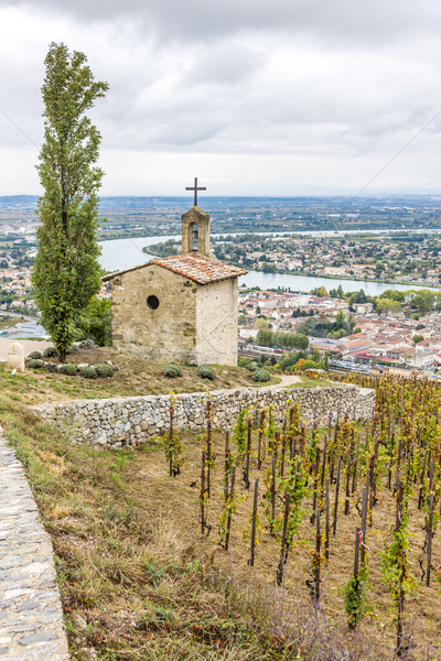 grand cru vineyard and Chapel of St. Christopher, Hermitage, France Stock photo © phbcz